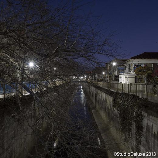 045_20130223鶴の橋上.jpg